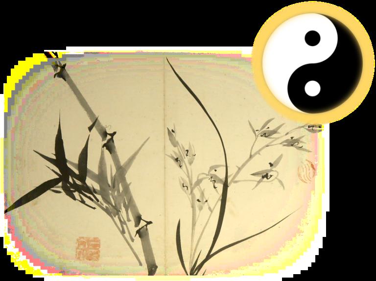 Qigong and Tai Chi Classes   Matrix of Healing